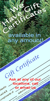 NEW at Windchime Nursery - Gift Certificates in any Amount